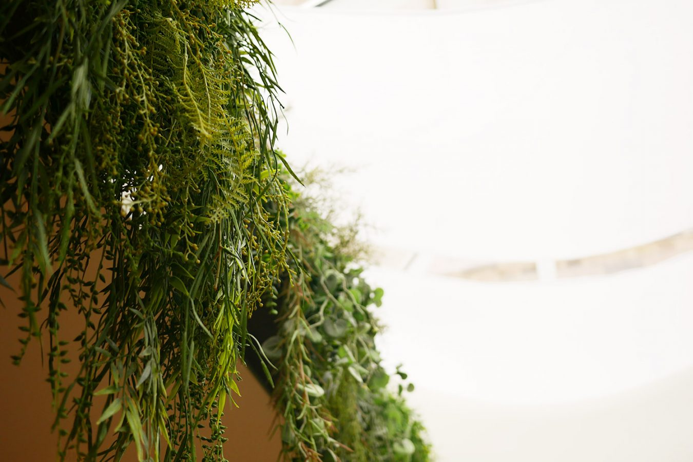 Mam_Restaurant_bar_Design_details_interior_plants_planter_ceiling